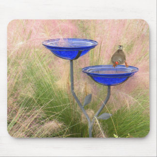 Mousepad, Blue Bird Bath with Finch Mouse Pad
