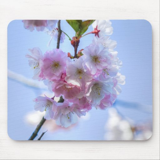 mousepad cherry blossom