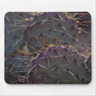 Mousepad Featuring Mule Ear Cactus