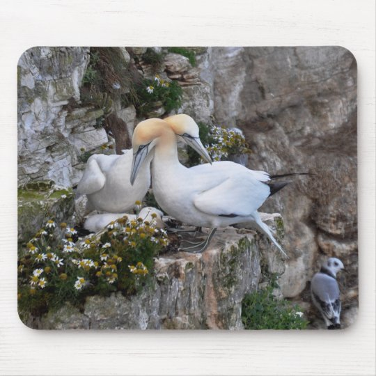 Mousepad: Gannets and Flowers Mouse Mat