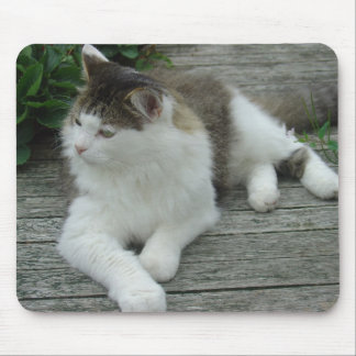 Mousepad or Mousemat - Maine Coon Cat   Image 1