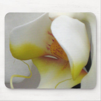 Mousepad or Mousemat - Orchid