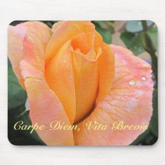 Mousepad--Orange Rose With Raindrops Mouse Mat