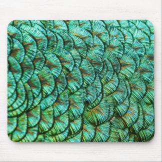 mousepad - peacock feathers
