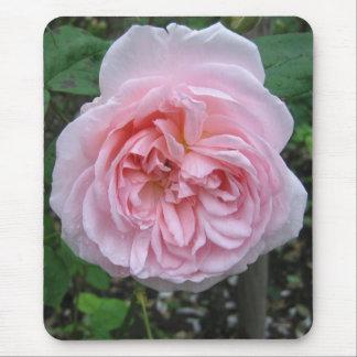 Mousepad Pink Rose