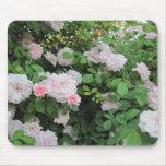 Mousepad: Pink Roses
