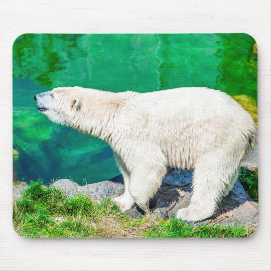 Mousepad polar bear