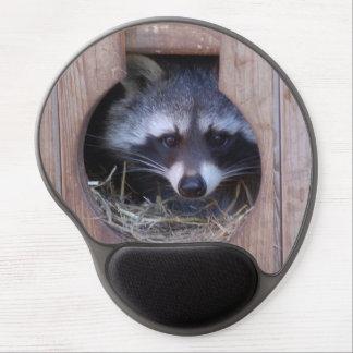 Mousepad raccoon/Racoon - photo Jean Louis Glineur Gel Mouse Mat