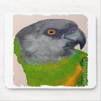 Mousepad - Senegal Parrot