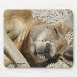 Mousepad Sleeping Kangaroo Photo Australia