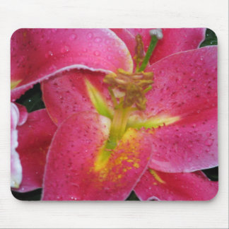 Mousepad, Stargazer lilly Mouse Pad