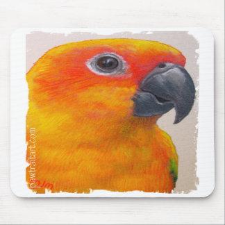Mousepad - Sun Conure Parrot