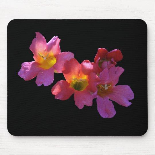 "Mousepad,""Sun Shining Through Mandevilla Blossoms' Mouse Pad"