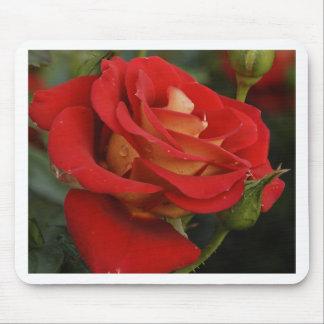 Mousepad talk yellow rose