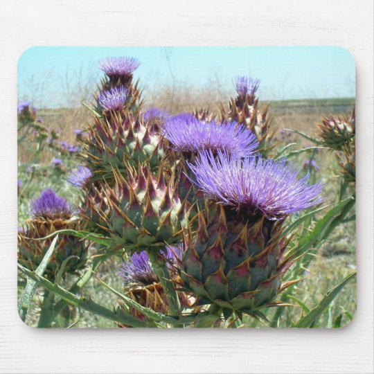 Mousepad - Thistle