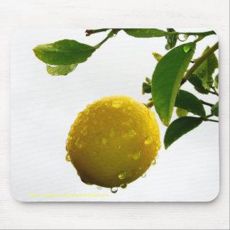 Mousepad - wet lemon in the rain