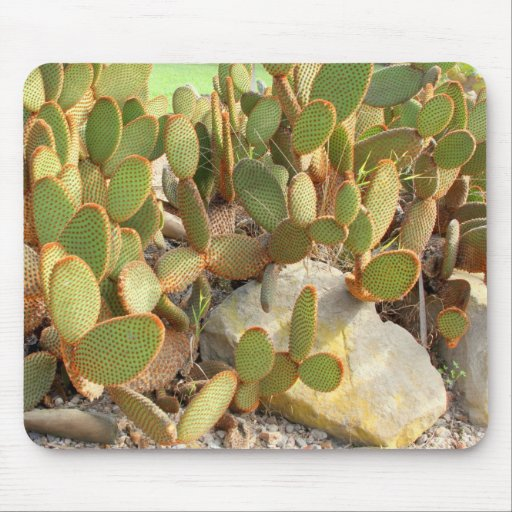 Mousepad with Cactus