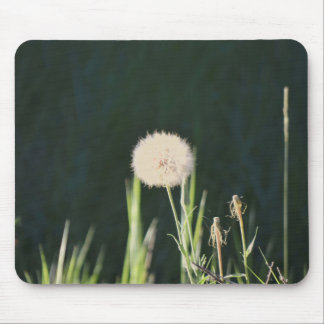 Mousepad with Dandelion