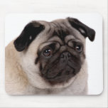 mousepad with pug muzzle