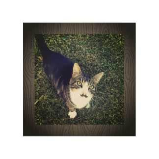 Moustache Cat on the Prowl Wood Wall Decor