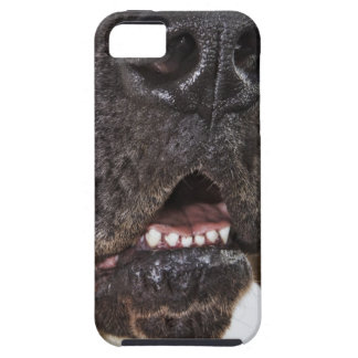 Mouth of Great Dane, close-up Case For The iPhone 5