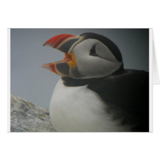 Mouthy Puffin Greeting Card