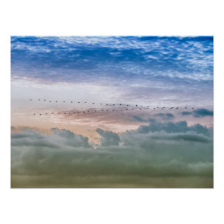 Moving Forward Bird Migration Team Inspiration Poster