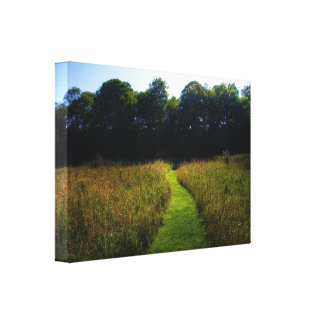 Mown Stretched Canvas Prints