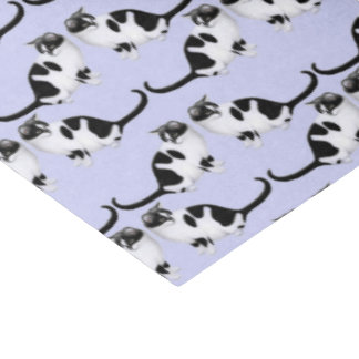 Moxie the Black & White Tuxedo Cat Tissue Paper