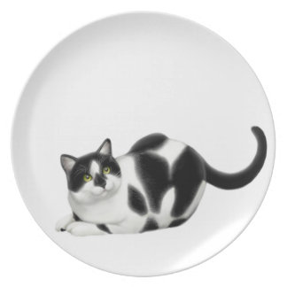 Moxie the Tuxedo Cat Plate