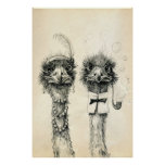 Mr. and Mrs. Ostrich Poster