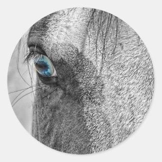 Mr. Blue Eye Round Sticker