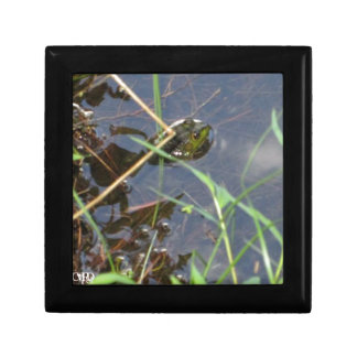 Mr. Frog Small Square Gift Box