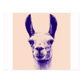 Mr Llama Postcard