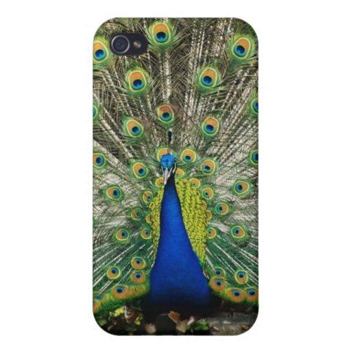 Mr. Peacock iPhone 4 Case