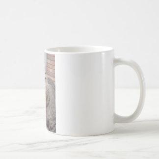 Mr Personality the Tabby Cat Basic White Mug