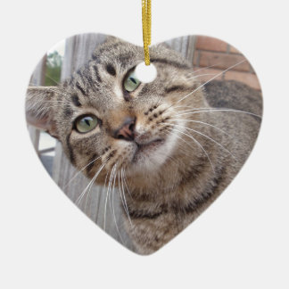 Mr Personality the Tabby Cat Ceramic Heart Decoration