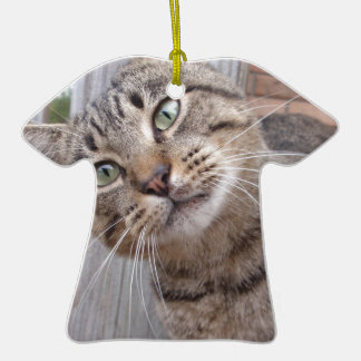 Mr Personality the Tabby Cat Ceramic T-Shirt Decoration