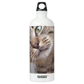 Mr Personality the Tabby Cat SIGG Traveller 1.0L Water Bottle