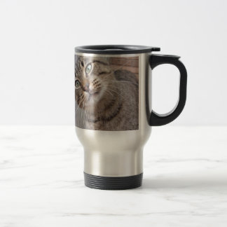 Mr Personality the Tabby Cat Stainless Steel Travel Mug