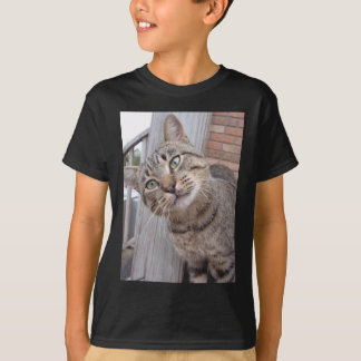 Mr Personality the Tabby Cat T-Shirt