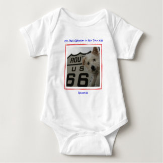 Mr. Pish on Route 66 Official Gear T Shirts