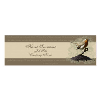 Mr. Robin Finds the Key, business card template Pack Of Skinny Business Cards