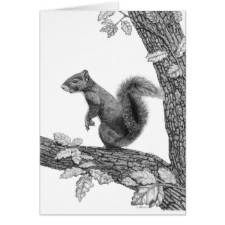 Mr Squirrel - Blank Note Card