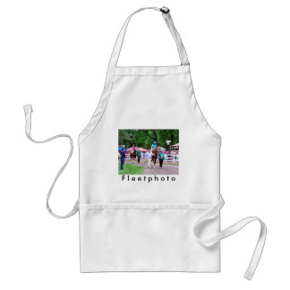 Mr. Z in the 100th Sanford Stakes Aprons