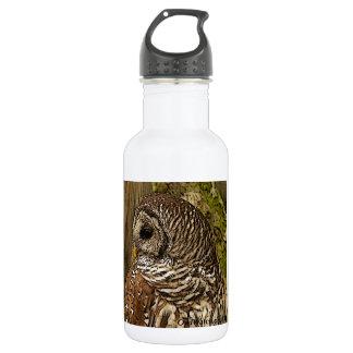 Mrs Barred Owl 532 Ml Water Bottle