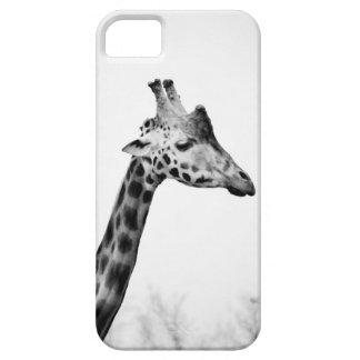 Mrs Giraffe iPhone 5 Cover