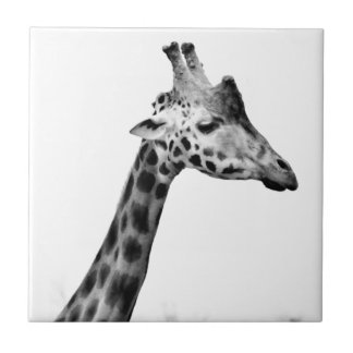 Mrs Giraffe Tile