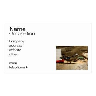 Mrs Wood Duck Business Card