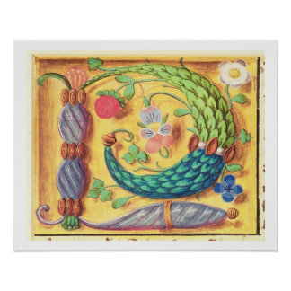 Ms 134 Illuminated letter `P' decorated with flowe Poster